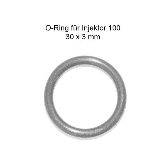 O-Ring für Injektor 100